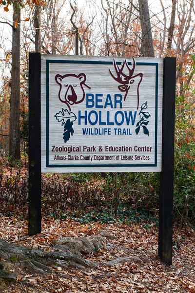 wsheldon_bearhollow-20121208-6260.jpg