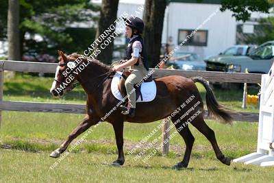 91 Hanna & Stonecroft Scarlet Sage 05-20-2012