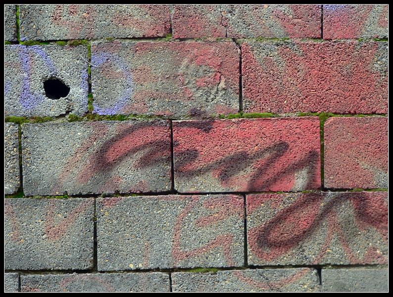 2005 nov varie 037.jpg