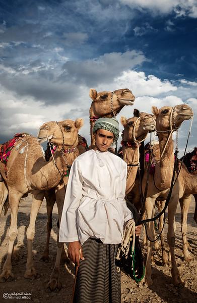 camels (6).jpg