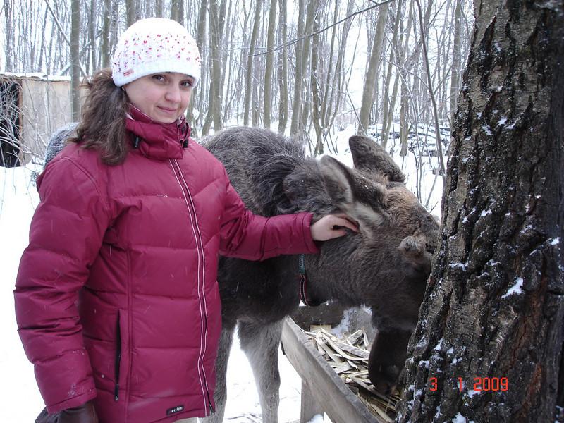 2008-12-31 НГ Кострома 70.JPG