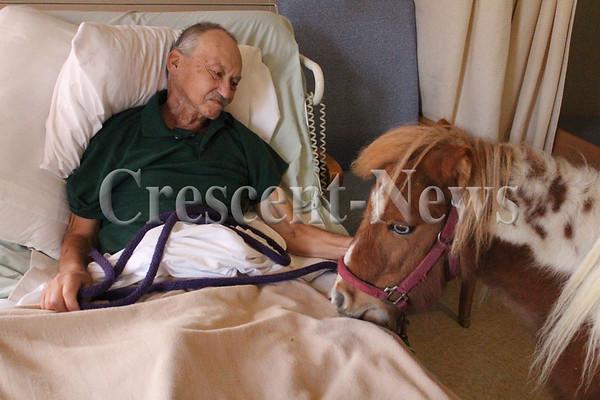 11-03-14 NEWS Man with pony