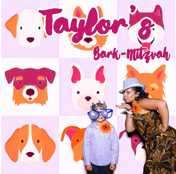 Taylors pawmitzvah-20794.jpg