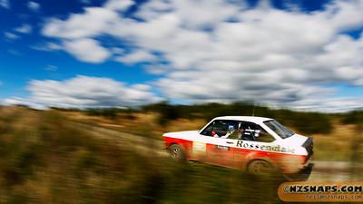 2011 Ari Vatanen test