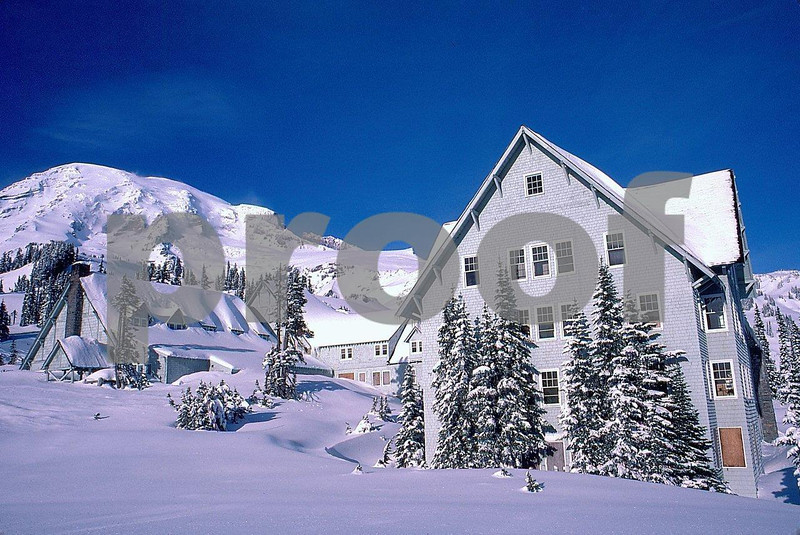 Paradise Lodge 1987.181a