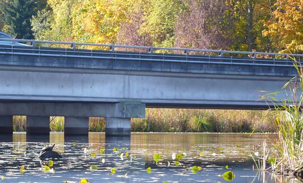 10-26-2008 Lake Washington