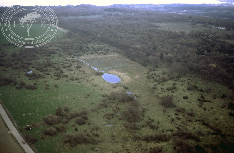 Svabesholm, botanical protected area (1986). | LH.0124