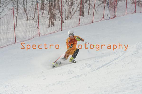 OFSAA Alpine 2014 Level II Slalom Women