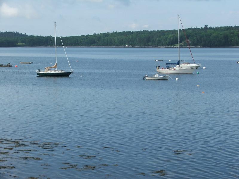 Maine 2007 004.JPG