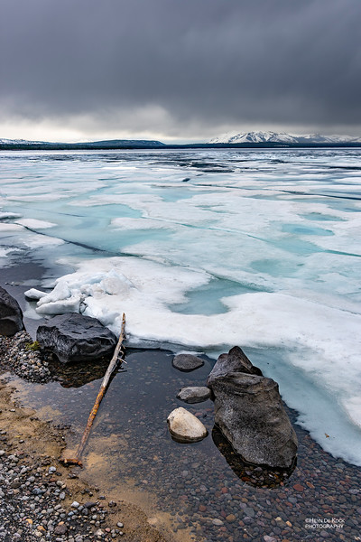 Yellowstone Lake, Yellowstone NP, WY, USA May 2018-6.jpg