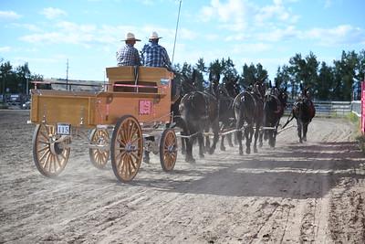 8 up mule