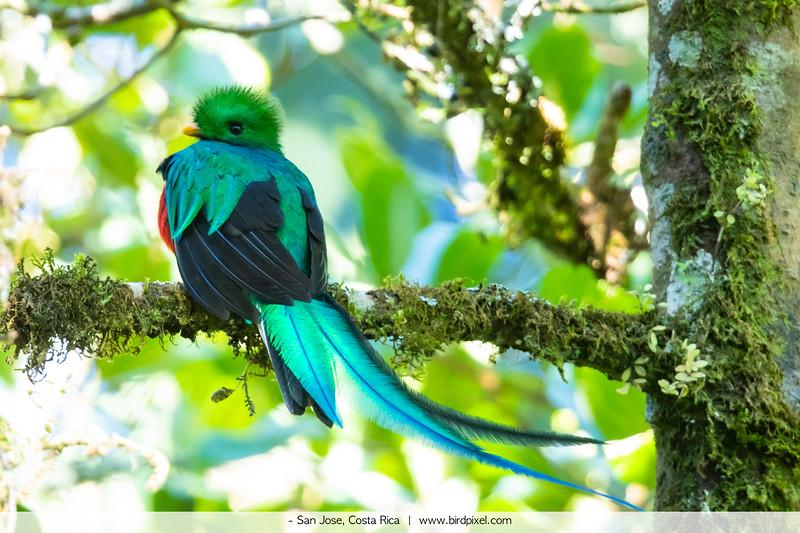 - San Jose, Costa Rica