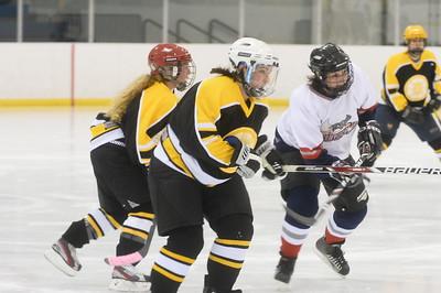 Game 1 - Stingrays vs Detroit Blades