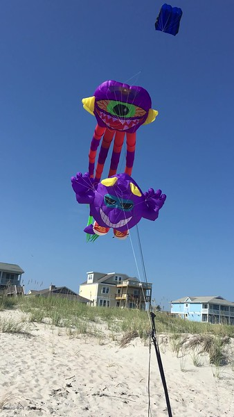 Misc July 2017 kites