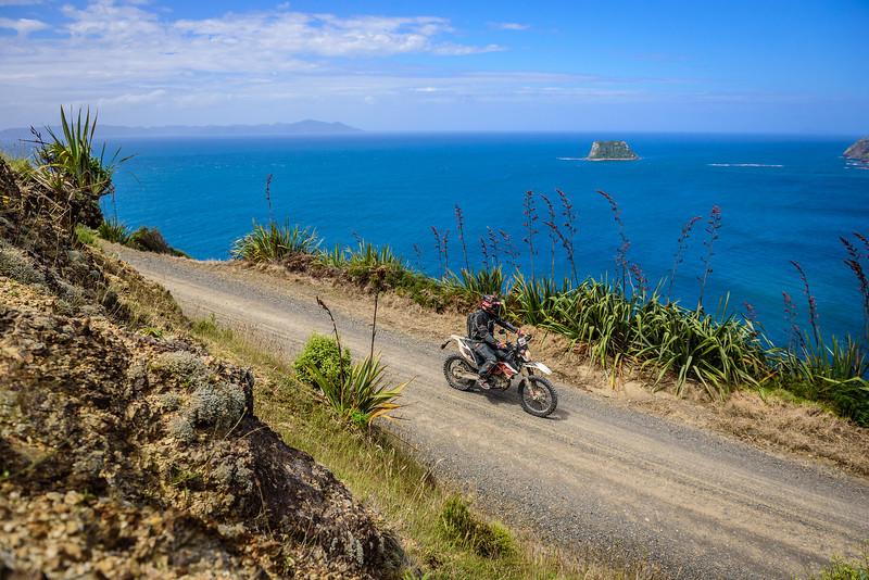 2018 KTM New Zealand Adventure Rallye - Northland (701).jpg