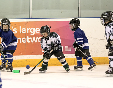 Leafs vs Klippers
