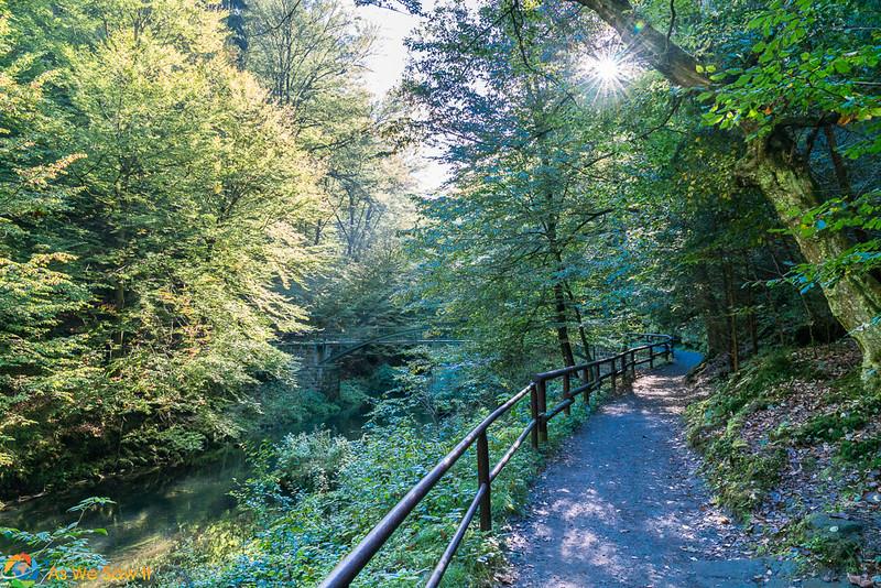 Gorges-Bohemian-Switzerland-07147.jpg