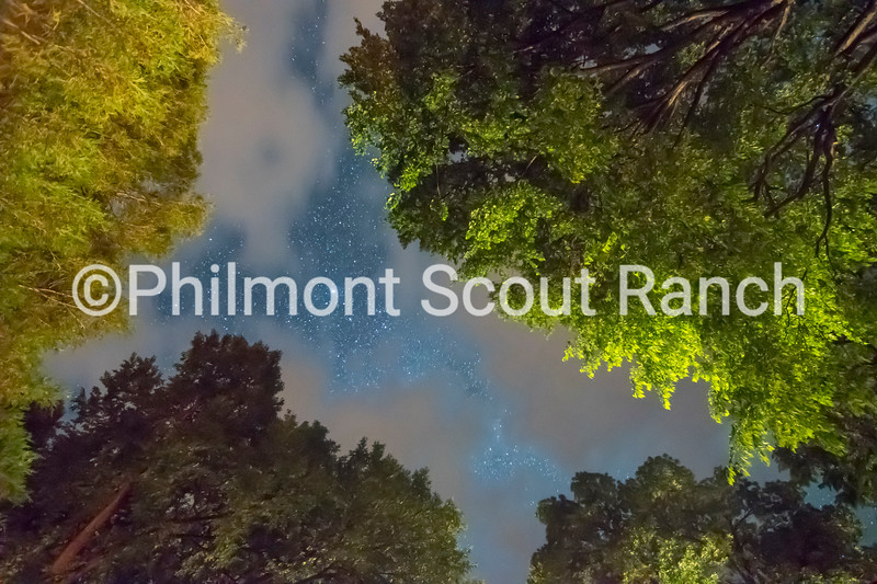 1st_2018_Philmont Skies_ThomasMejia_Cosmic Veins _Villa Lawn _586.jpg