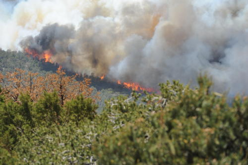 . A wildfire near Royal Gorge Bridge Park is seen in a Tuesday, June 11, 2013 photo. Firefighters said Wednesday that winds are pushing the fire away from Canon City and structures. The Royal Gorge Fire has destroyed three structures near Canon City.  (AP Photo/Daily Record, Brandon Hopper)