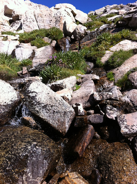 Taken with my iPhone.  One of hundreds of cascades in the Miter Basin.