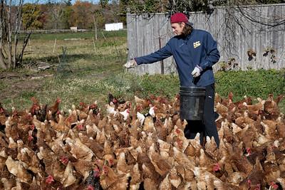 Truelove Farms