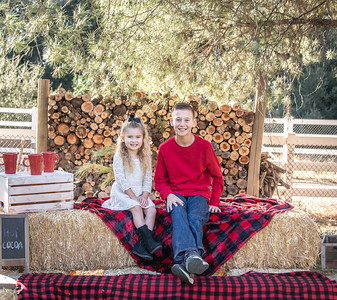 2019 Kristy Holiday Mini Session