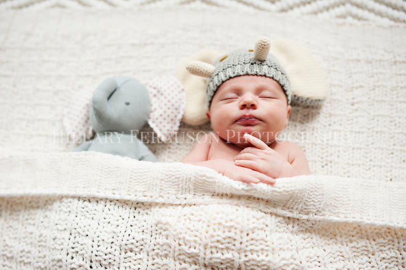 Hillary_Ferguson_Photography_Carlynn_Newborn034.jpg