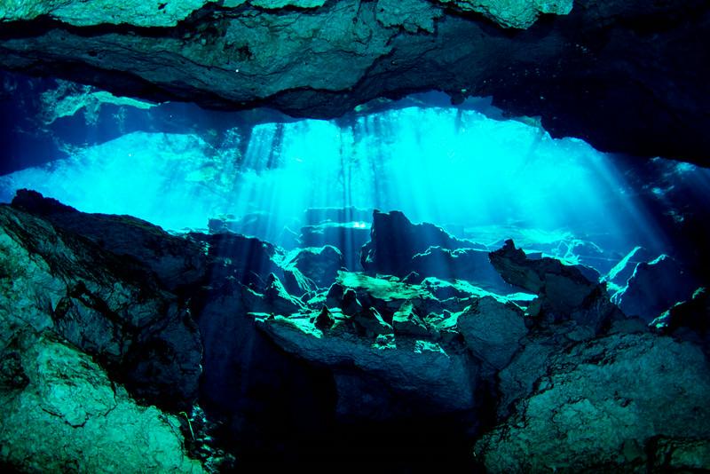 2014 Whale Shark - Cave Adventure-100.jpg