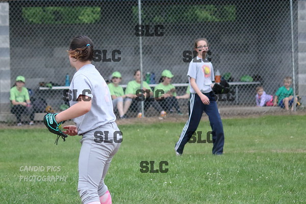 NO. LAW GIRL SOFTBALL 2017