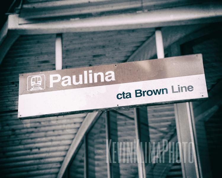 Paulina CTA Brown Line