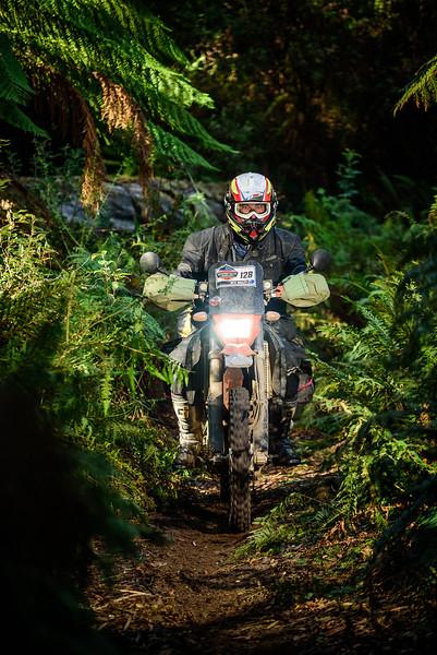 2019 KTM Australia Adventure Rallye (945).jpg