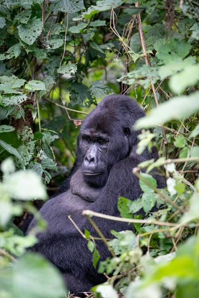 Uganda_T_Gor-1528.jpg