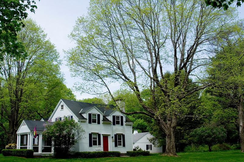 House in Spring.jpg