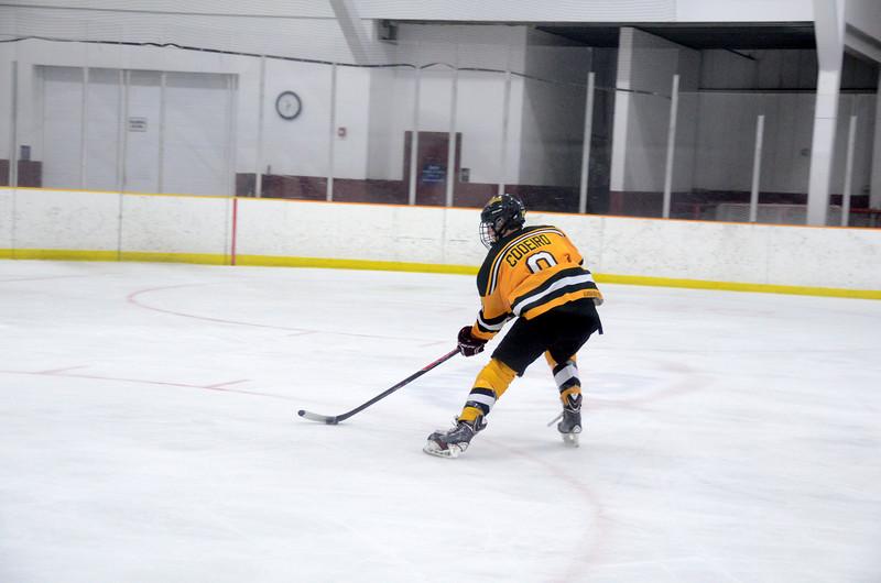 141018 Jr. Bruins vs. Boch Blazers-028.JPG