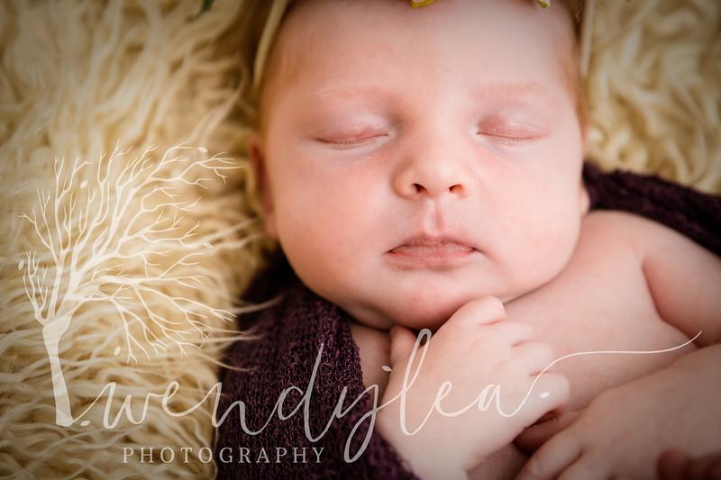 wlc Baby Girl Addi1702020-Edit.jpg