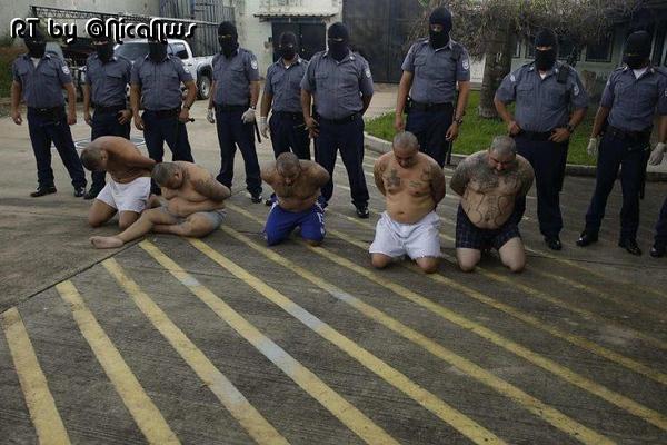 POSITIVE_CriminalsShowFaceNi.jpg