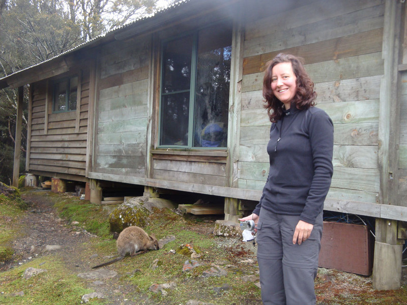 The Windermere Hut was warm and comfy (relatively!), and frequented by pademelons (a type of wallaby), quolls and other wildlife. They would particularly frequent the washing up area at dusk, searching for food scraps.