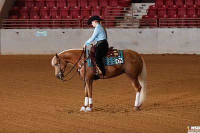 Wednesday Novice Horse Set 8 56-63