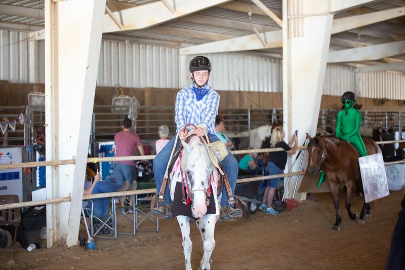 HorseCostume-10.jpg