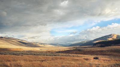 Wyoming 2020