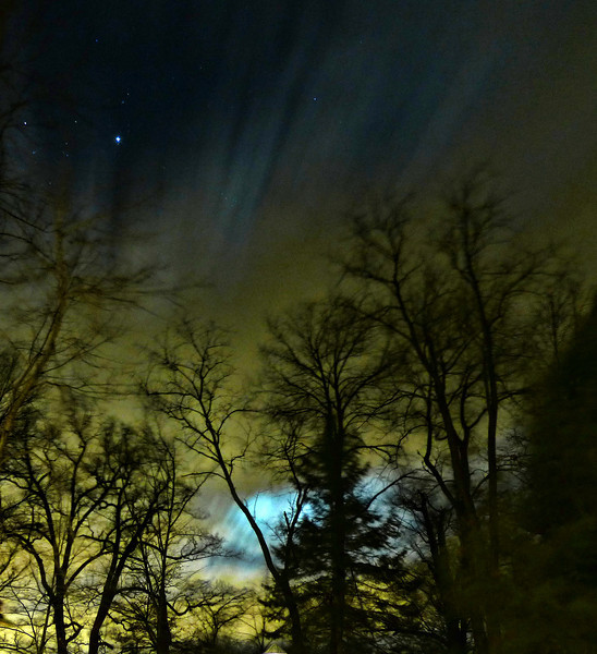 A WindyMoonlit Night