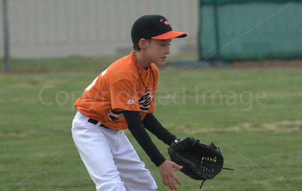 Little League Baseball Orioles vs. Yankees March 22  2011