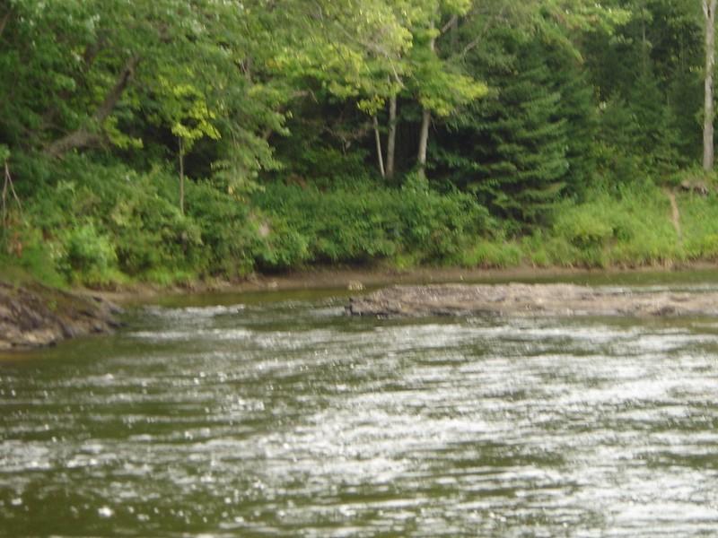 Burnt River 2008 016.jpg