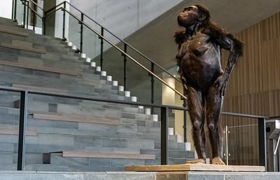Moesgaard Museum 2019