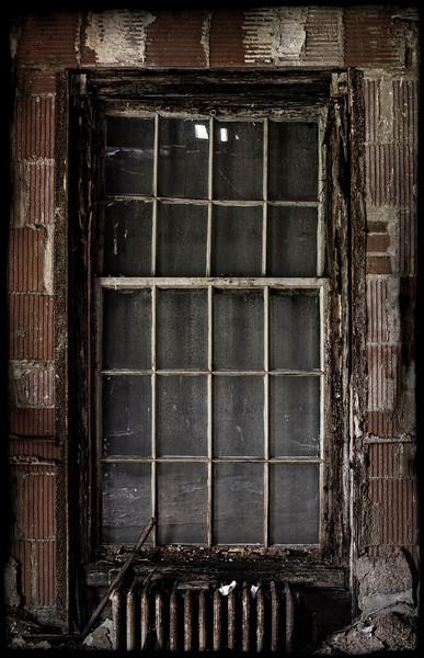 kings-park-window-02.jpg