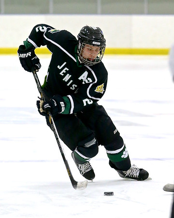 Jenison-Zeeland United Hockey
