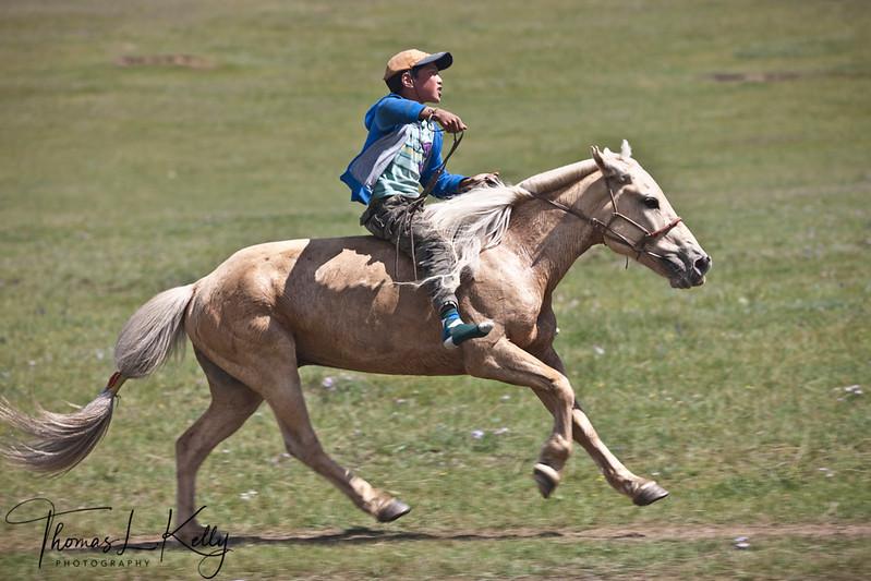 Bareback horse race. Naadam Festival in Mongolia.
