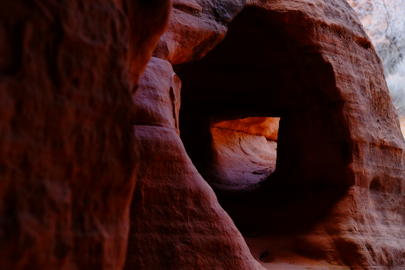 Nevada Las Vegas Red Rock Canyon0016.jpg