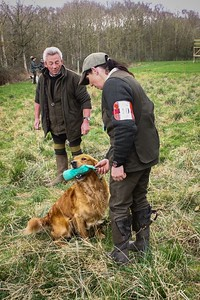 Working Test Retrievers Novice and Open March 19th