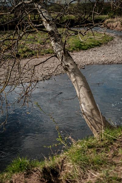 006_River_Walk.jpg